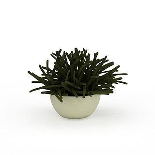 花草盆栽3d模型