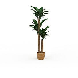 树木盆栽3d模型