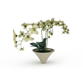 鲜花盆栽3d模型