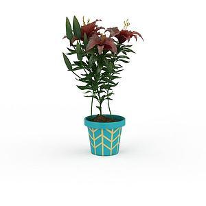 紅色百合花盆栽模型