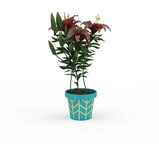 红色百合花盆栽3d模型