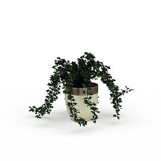 盆栽绿化3d模型