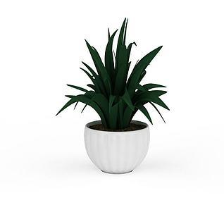 绿植盆栽装饰品3d模型3d模型