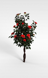 3d<font class='myIsRed'>植物</font>花株模型