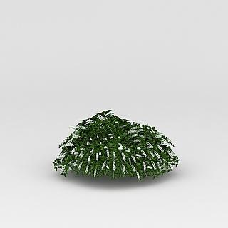 <font class='myIsRed'>植物</font>绿植3d模型