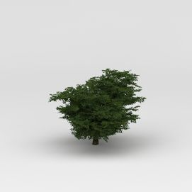 3d<font class='myIsRed'>植物</font>大树模型