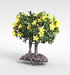 植物景观花树模型3d模型