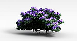 3d紫色<font class='myIsRed'>花</font>簇模型