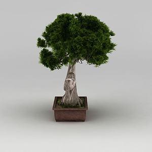 户外精品大树盆栽模型
