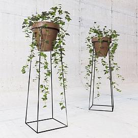 藤蔓绿植模型