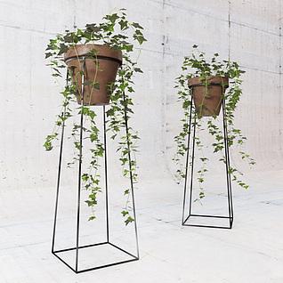 藤蔓绿植3d模型