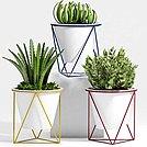 现代创意盆栽模型