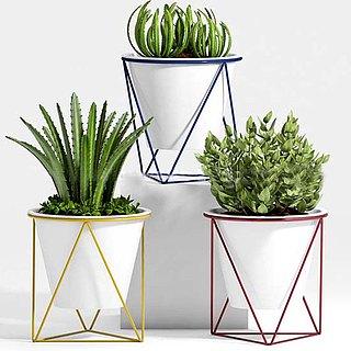 现代创意盆栽3d模型