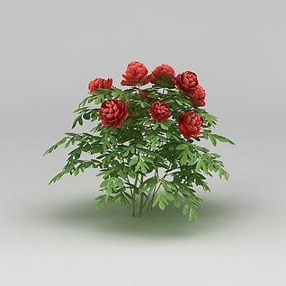 园林景观小品花草3d模型3d模型