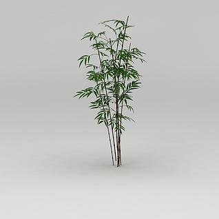 植物竹子3d模型