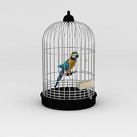 笼中鹦鹉3d模型