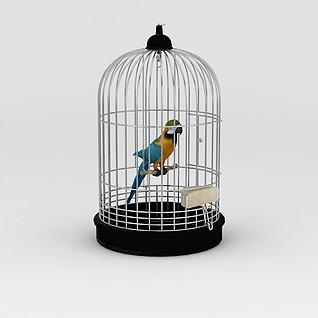 笼中鹦鹉3d模型3d模型