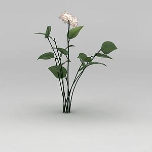 3d植物<font class='myIsRed'>花</font>草绿植模型