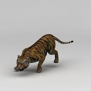 凶猛的老虎3d模型
