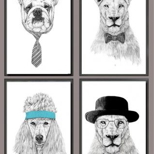 现代时尚动物装饰画套装3d模型
