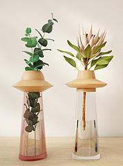 时尚植物摆件模型3d模型
