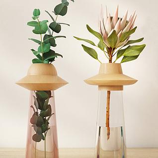 时尚植物摆件3d模型