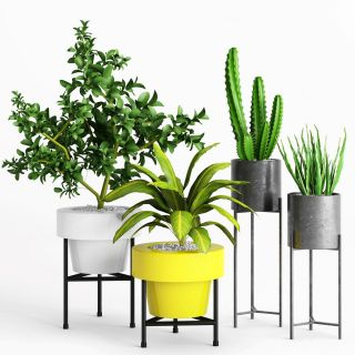 现代室内<font class='myIsRed'>绿植盆栽</font>3d模型