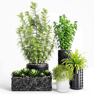 办公室<font class='myIsRed'>绿植盆栽</font>3d模型
