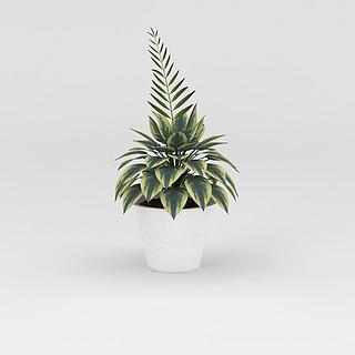 室内<font class='myIsRed'>绿植盆栽</font>摆件3d模型