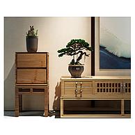 现代实木边柜组合3D模型3d模型