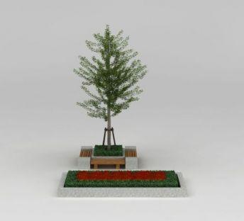 行道树银杏树