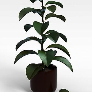 灌木绿植盆栽模型