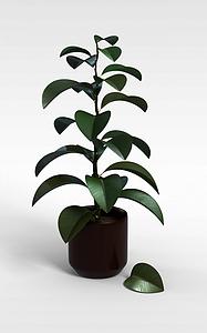 3d灌木绿植盆栽模型