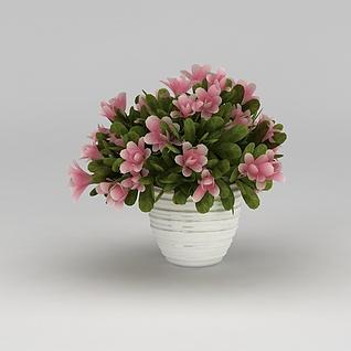 假花卉摆件3d模型3d模型