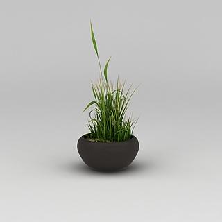 阳台绿植花盆3d模型