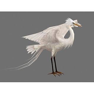 展翅白鹭3d模型