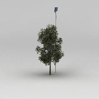 行道树和路灯3d模型