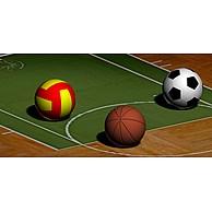 体育(球类)3D模型3d模型