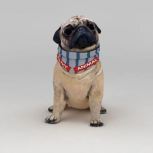 癞皮狗模型