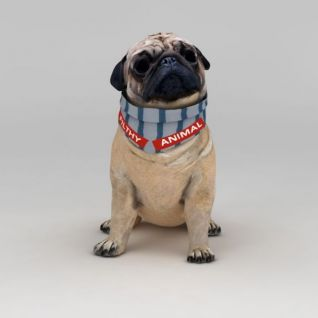 癞皮狗3d模型