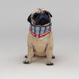 癞皮狗3d模型3d模型