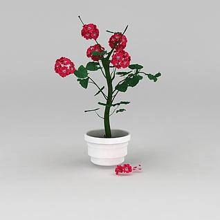 花盆盆栽3d模型