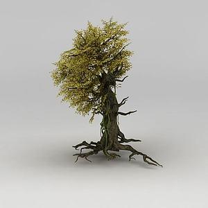 胡杨树模型