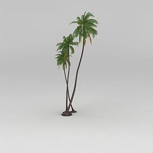 椰子树模型