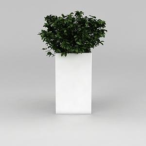 3d室内<font class='myIsRed'>花盆</font>绿植模型