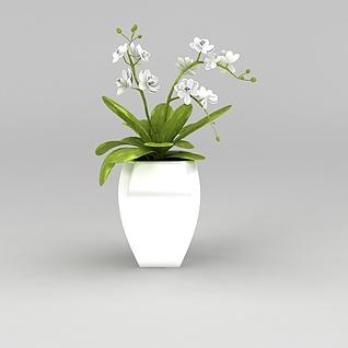 客厅花盆装饰品3d模型