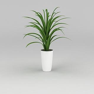 大厅花卉绿植3d模型