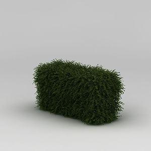 3d绿化带灌木模型
