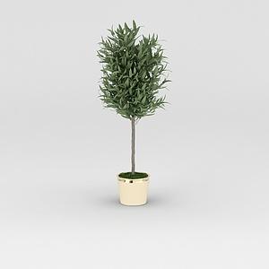 3d仿真<font class='myIsRed'>花盆</font>绿树模型