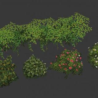 花草灌木3d模型